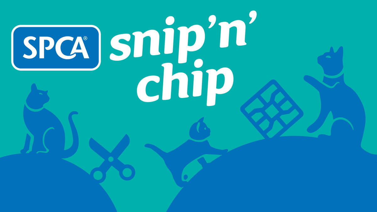 SPCA and Auckland Council Snip 'n' Chip