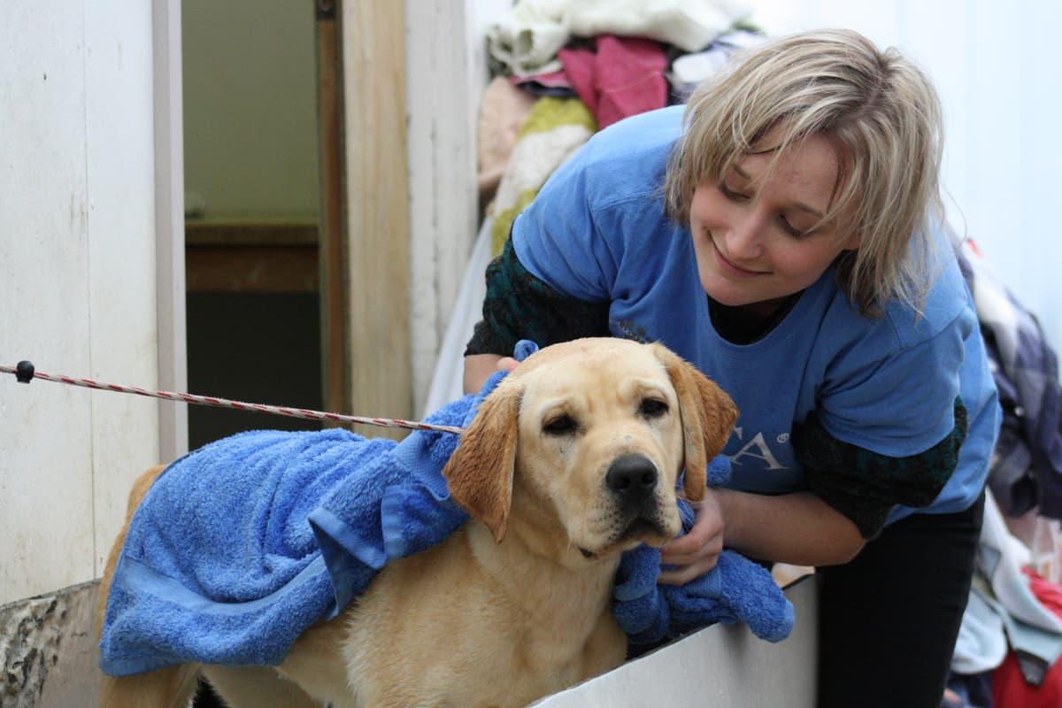 Volunteer • SPCA New Zealand